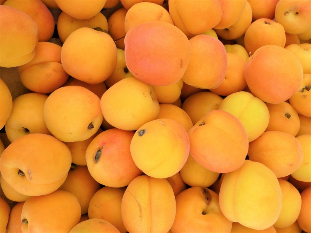 Image with many peaches